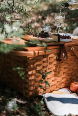 picnic_ape